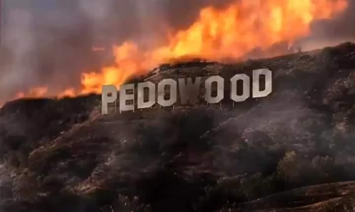Pedowood